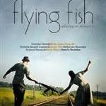 flying fish3654.jpg